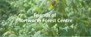 Friends of Tortworth Arboretum @ Tortworth Arboretum